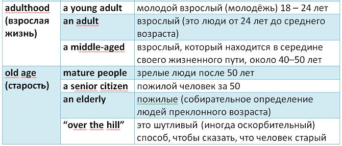 английский язык возраст человека